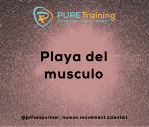 spierpomp, pomp, hypertrofie, Jothan Purmer, Personal Trainer, afvallen, ouderkerk